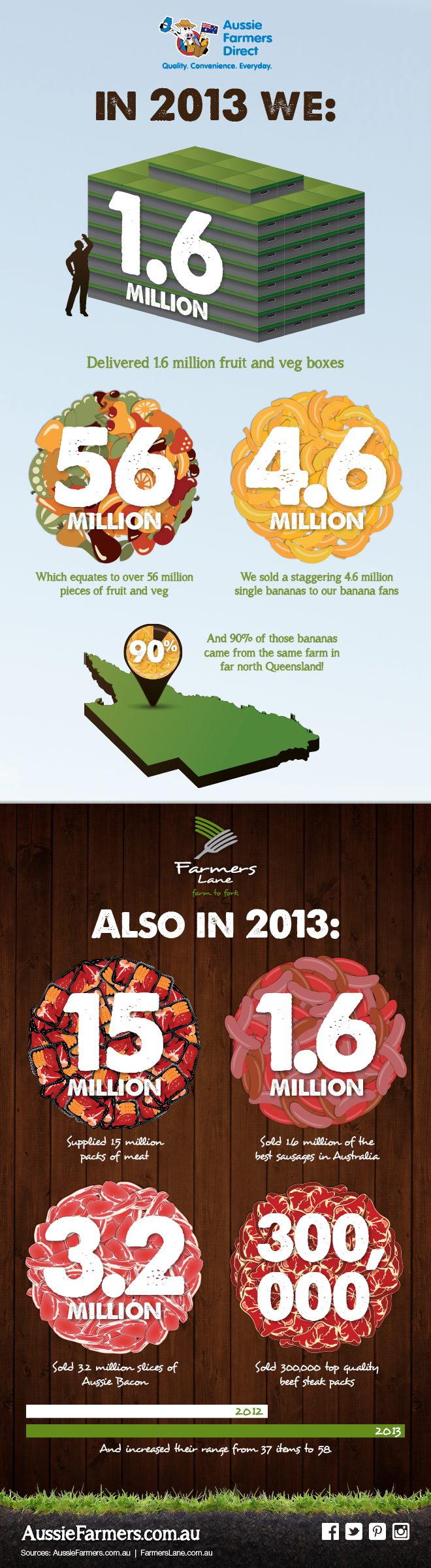 2013 Fruit, Veg and Meat Review Infographic