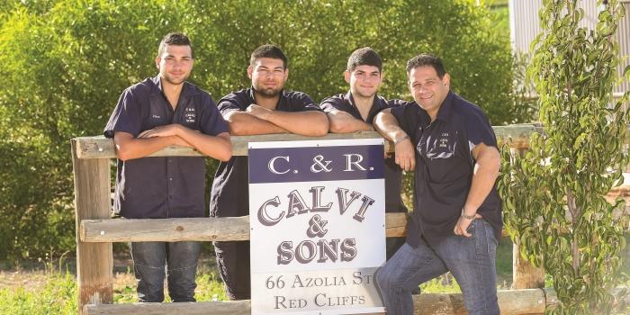 Aussie Pumpkin Farmers, Calvi and Sons
