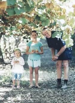 Kiwi Fruit Farming